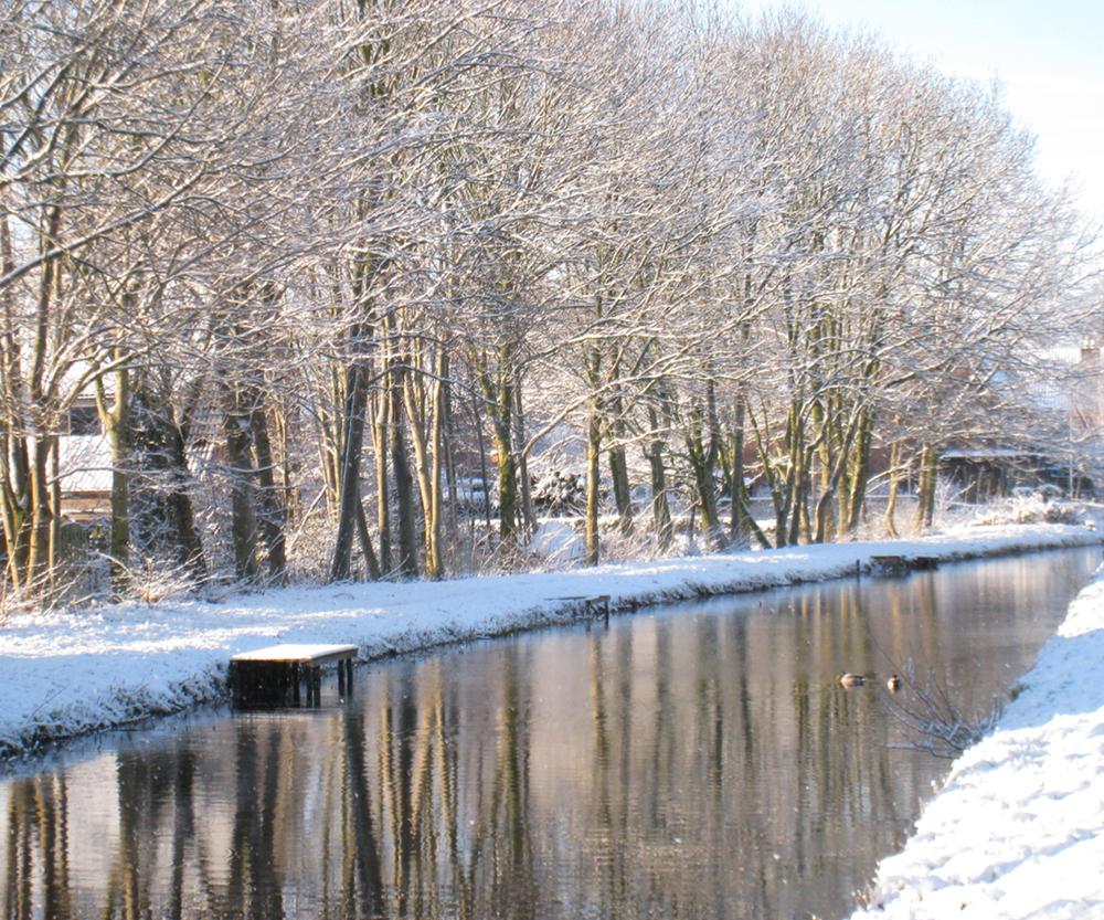 foto winter cea